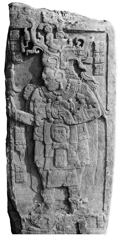 Calakmul Stela 51 Yuknoom Took Kawiil