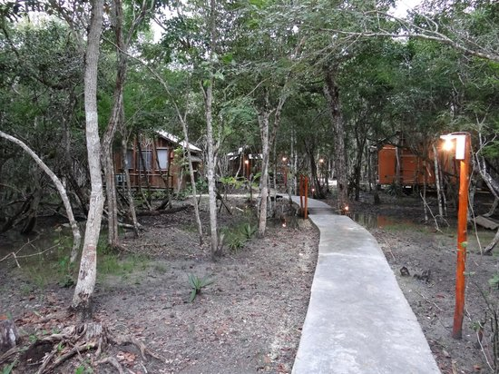 Jungalow Path Rio Bec Dreams Hotel in Calakmul